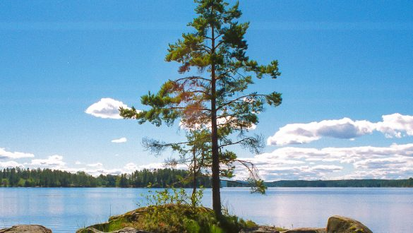 jugendreise-schweden-insel