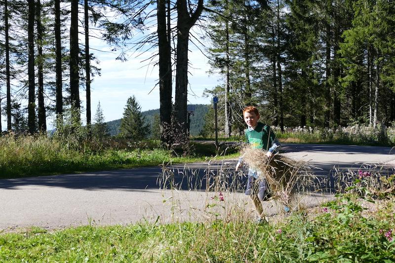 feriencamp-schwarzwald-2