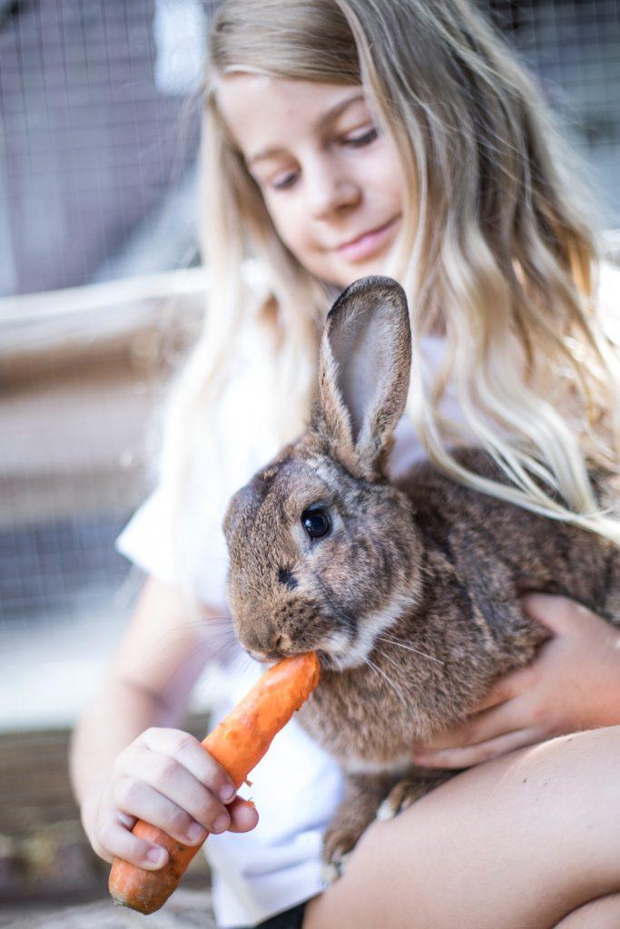 kind-mit-kaninchen